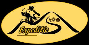 Defnitief logo website
